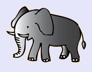 elephant3