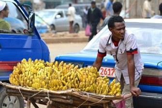 seller banana