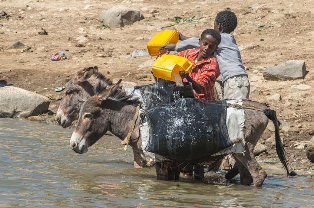 work eritrea