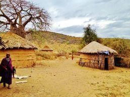 zenga massai-land
