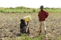 village-farmer