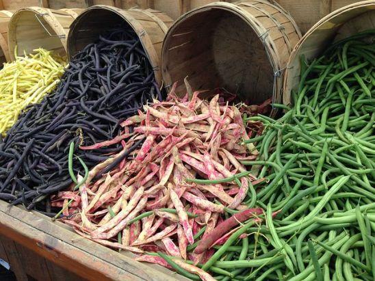 kunde beans