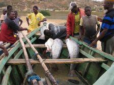 pescadores-