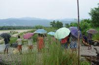 raining-