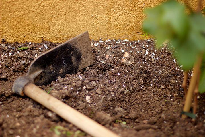 dirt-